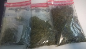 The cannabis seized by police recently.