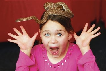 Despite her startled look Ashlyn (7) says she is not scared of the Stymsons python on her head. Picture: Bruce Hunt www.communitypix.com.au d404195