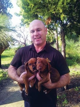 City Farmers managing director Clayton Hollingsworth at the Dogs' Refuge Home with four legged residents looking for a home.