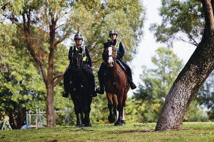 On patrol: Sergeant Vicki Bordin on Rocky and Constable Kelly Player on Blaze.