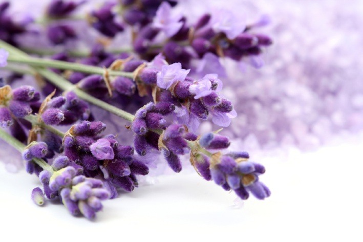 Carabooda lavender shop proposal: City of Wanneroo invites submissions