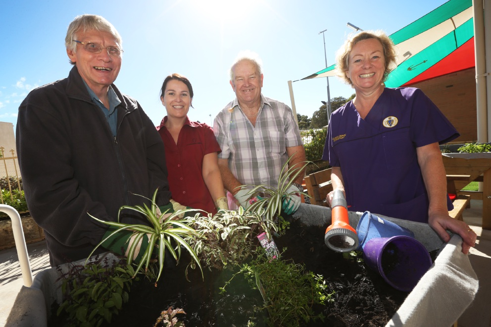 Fremantle D4 Rehabilitation participant Tony Graff (Menora), occupational therapist Paula McGinley, Robert Read (Baldivis) and clinical nurse consultant Janice Guy taking part in the Wellness Garden at Fremantle Hospital.
