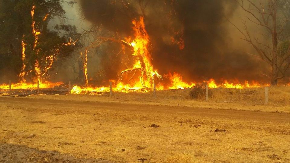 Photo from Vasse Bush Fire Brigade's Facebook page.