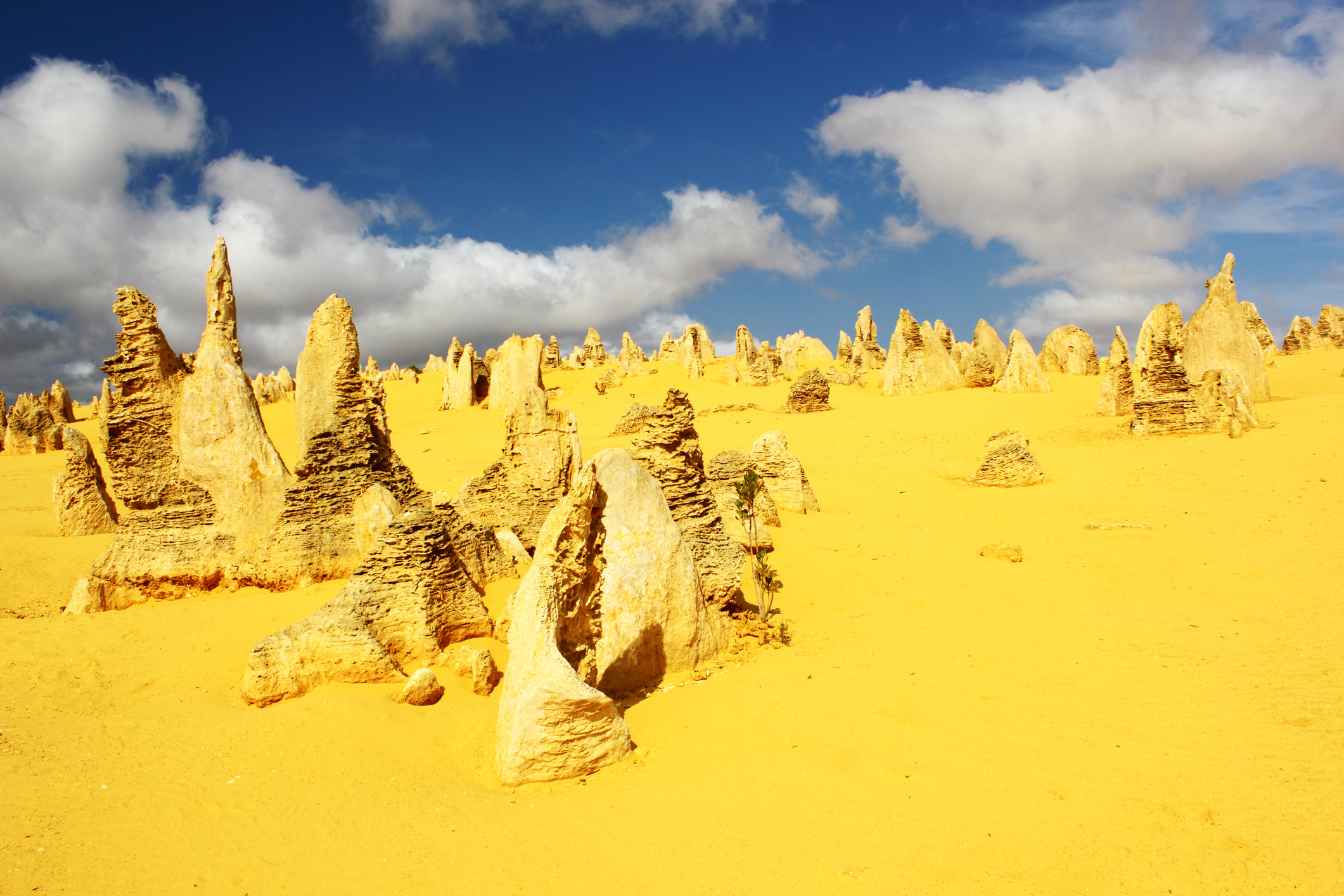 The Pinnacles: one of Western Australia's most magical places.