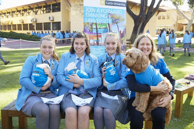 Students unwind with therapy dog George at Curtin University.