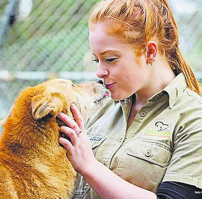 Peel Zoo zookeeper defends dingo that bit her face