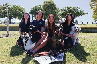 From Left: Lydia Smith with Beau, Kayla Mattaboni with Rocky, Jade Hopkinson with Spud, Demi-Lee Russell with Cleo. West Coast Institute of Training students have organised a Rustic Garden Party to raise funds for SAFE