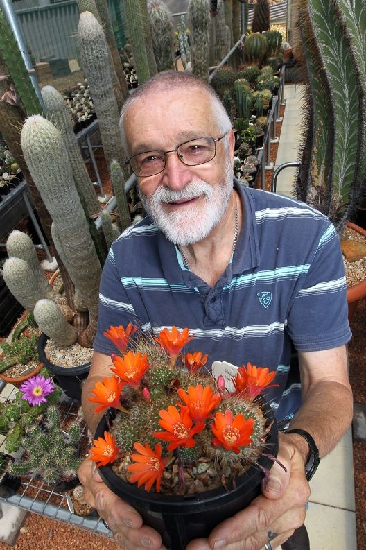 Cactus society presiden Bob Hunter with some of his many plants.