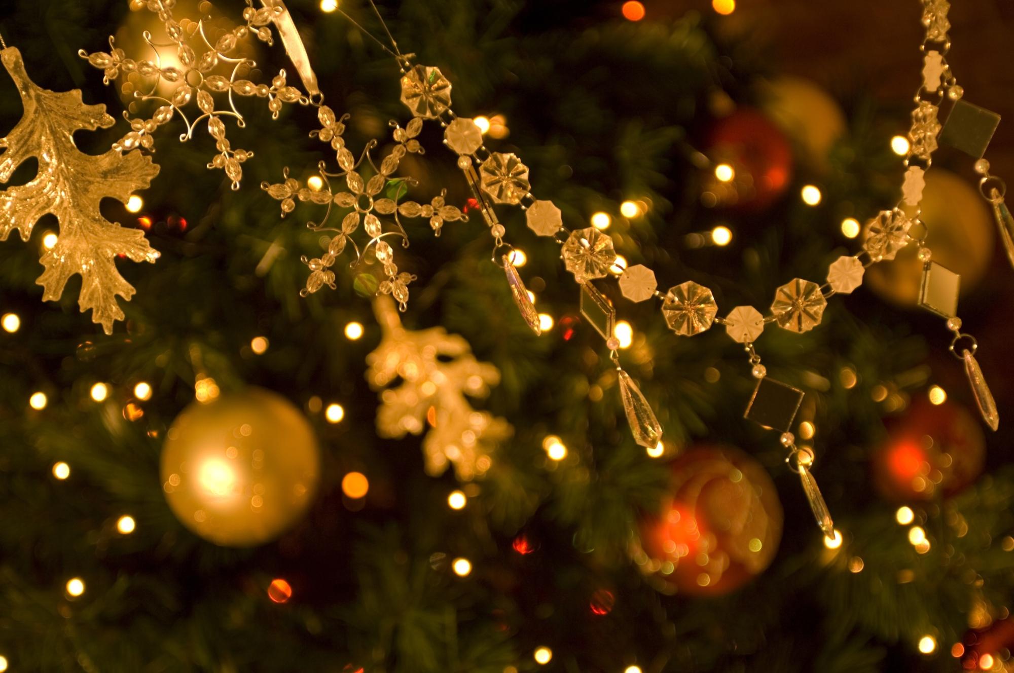 Leeming Primary School Christmas Fete