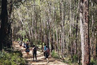 Participants walked 100km from Kalamunda to Chidlow.