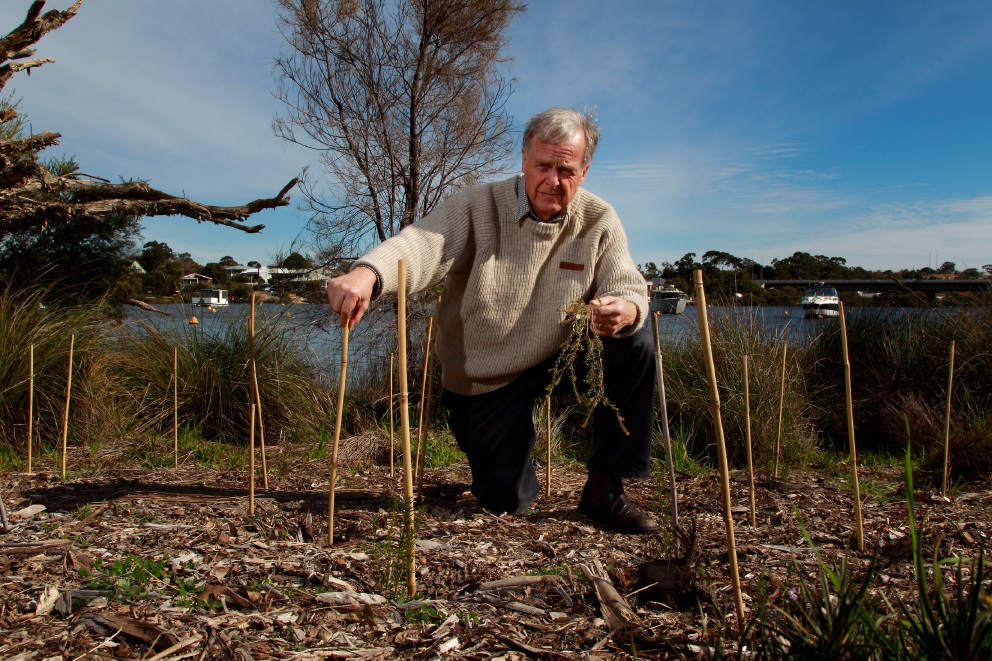 President Canning River Residents Environment Protection Association Stephen Johnston at one of the spots where plants have been ripped up and stolen after their recent revegetation initiative. Picture: Marie Nirme