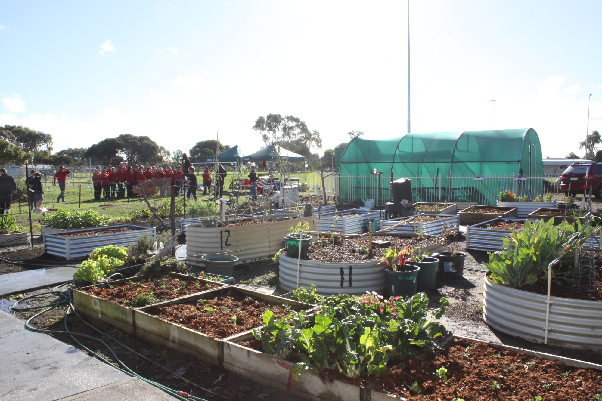 The new sustainable garden patch at Malibu Special Needs School with Bunnings staff in background.