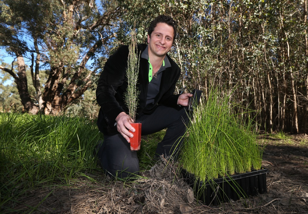 Cr Daniel Parasiliti took part in the revegetation works. Picture: Matt Jelonek           d456904