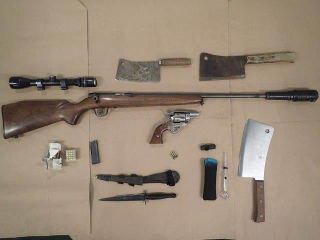 Millendon man facing multiple firearms charges