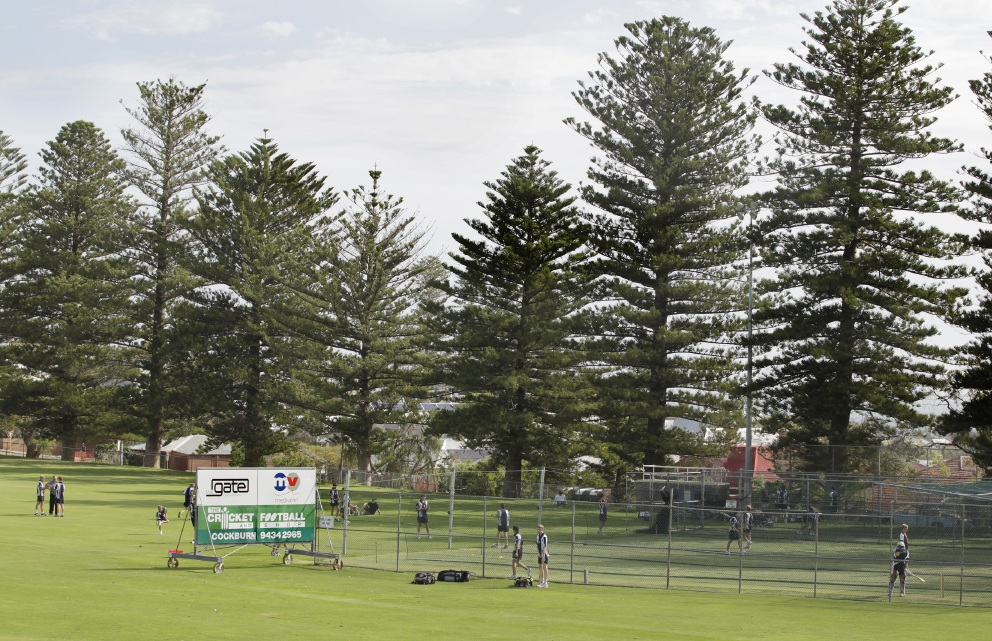 Stevens Reserve to host Futures League cricket matches