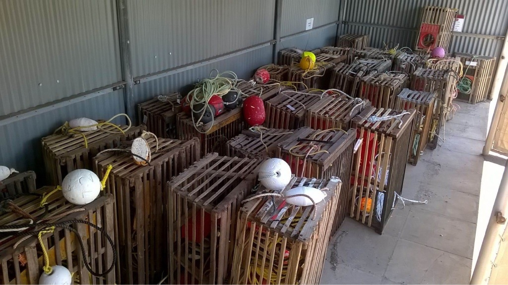 Lobster pots seized by Fisheries officers.