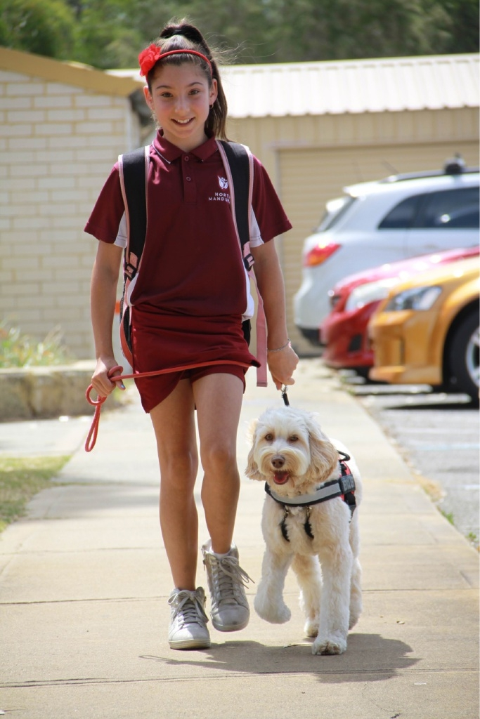 Lilly Zarganis can now walk to school provided Rosie is in tow. Picture: Gabrielle Jeffery