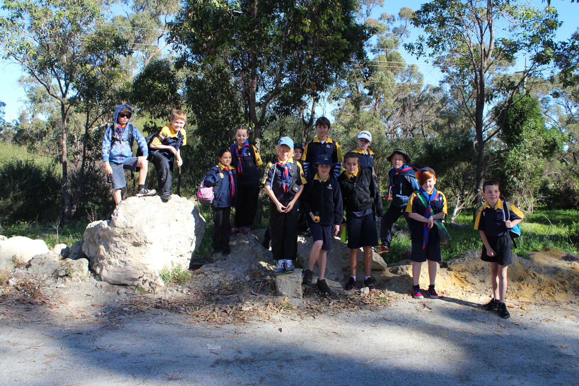 Scouts score most money in first round of Alkimos Sprout Hub Seedling Fund
