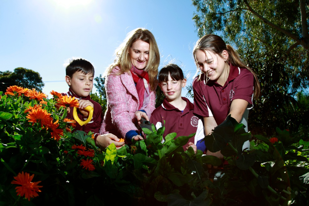 Teacher Erica Sharp-Nippierd with students (from left) Tom Slaughter, Caitlin Moncur and Kailee Atkinson in the school's garden. Picture: Marie Nirme www.communitypix.com.au   d457167