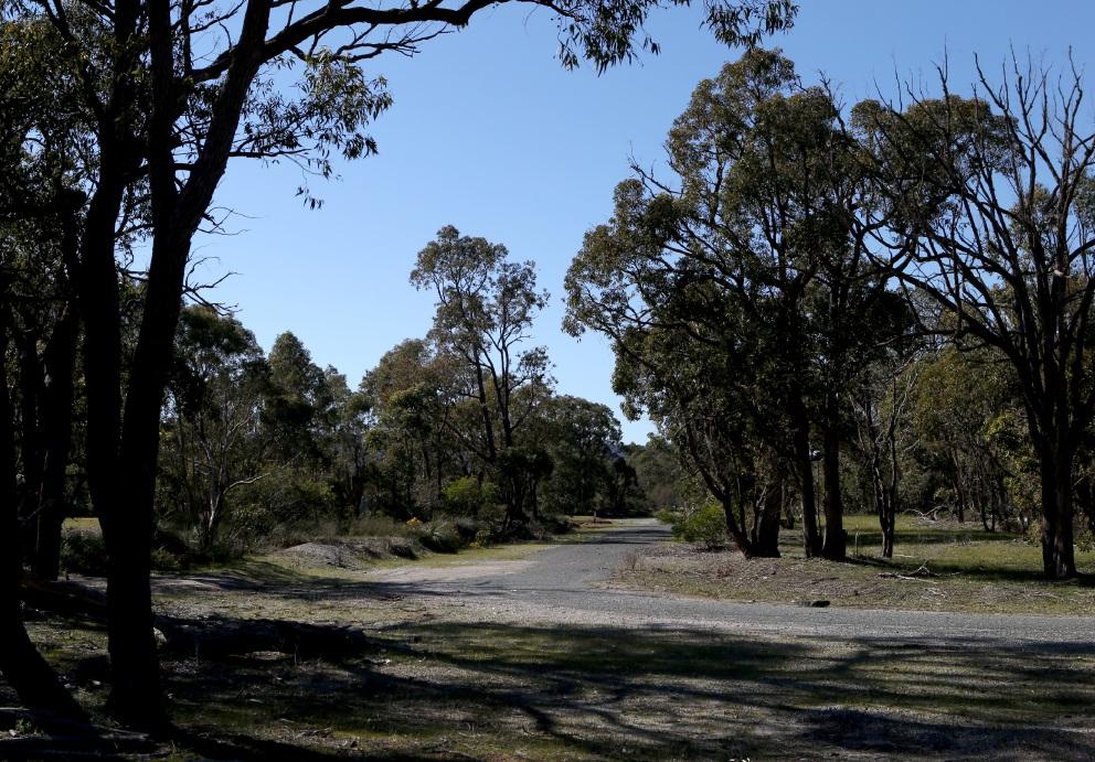 Developer Cedar Woods begins sales of Bushmead lots