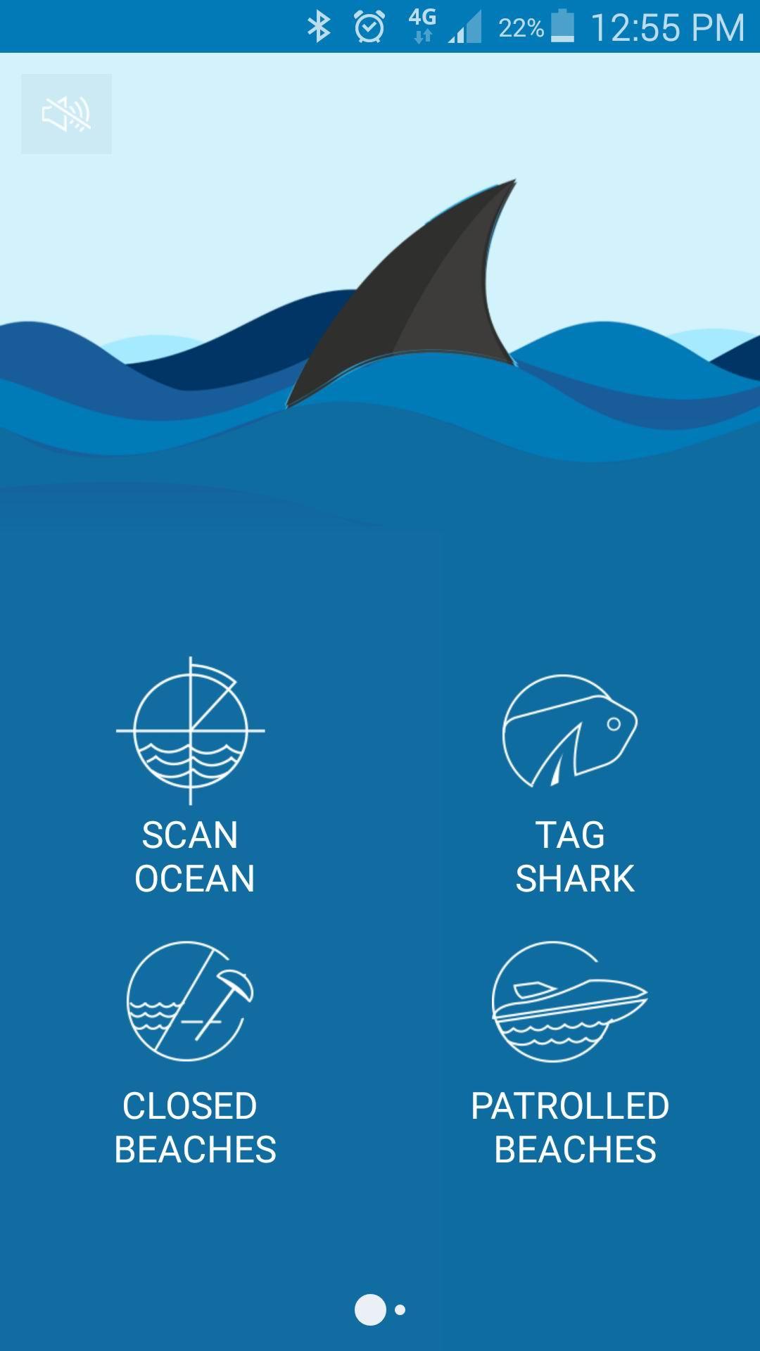 Jaws Alert: Mandurah's Anna Philp creates worldwide shark app