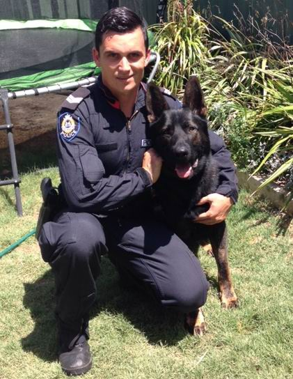 Police dog Faustus helps police make arrest at O'Connor business