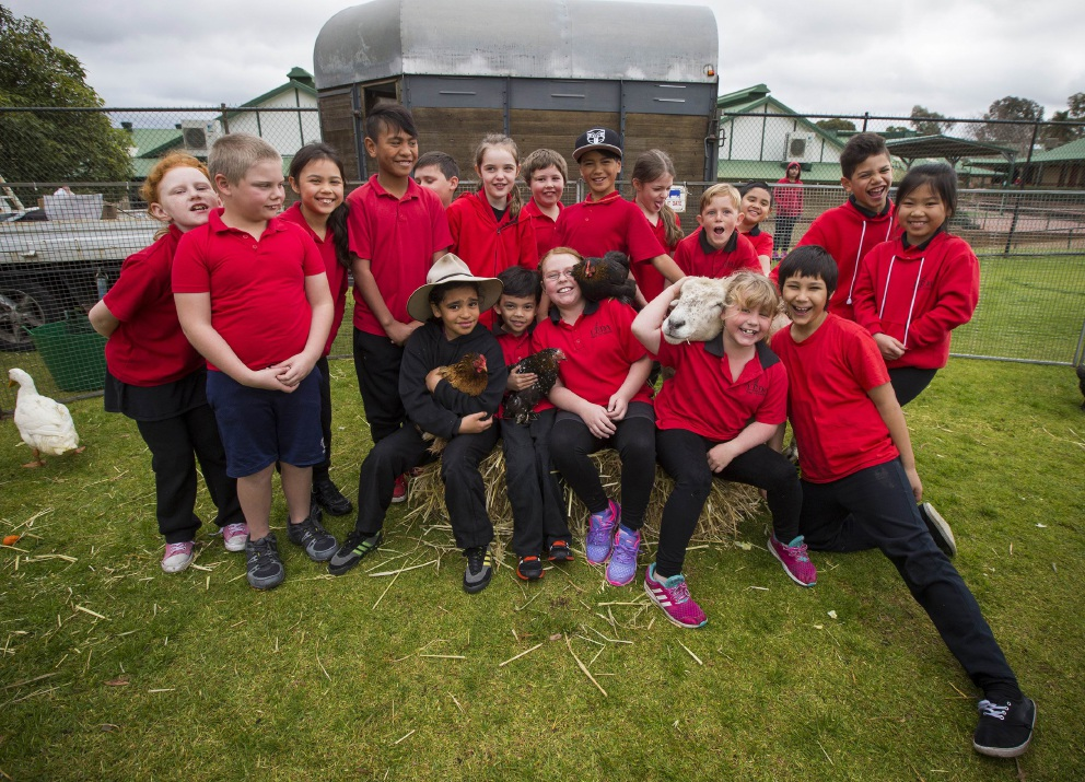 Farm visits Leda Primary School to give kids a taste of Country Life