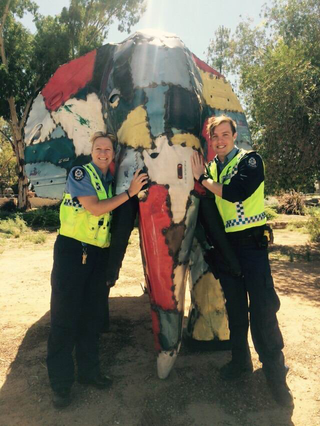 RAC Elephant in the Wheatbelt campaign urges drivers' safety