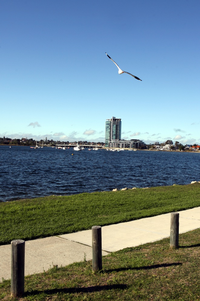 The river foreshore in the City of Melville is well-maintained and breathtaking.
