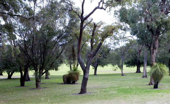 City of Wanneroo spring activities offer a good time to go bush