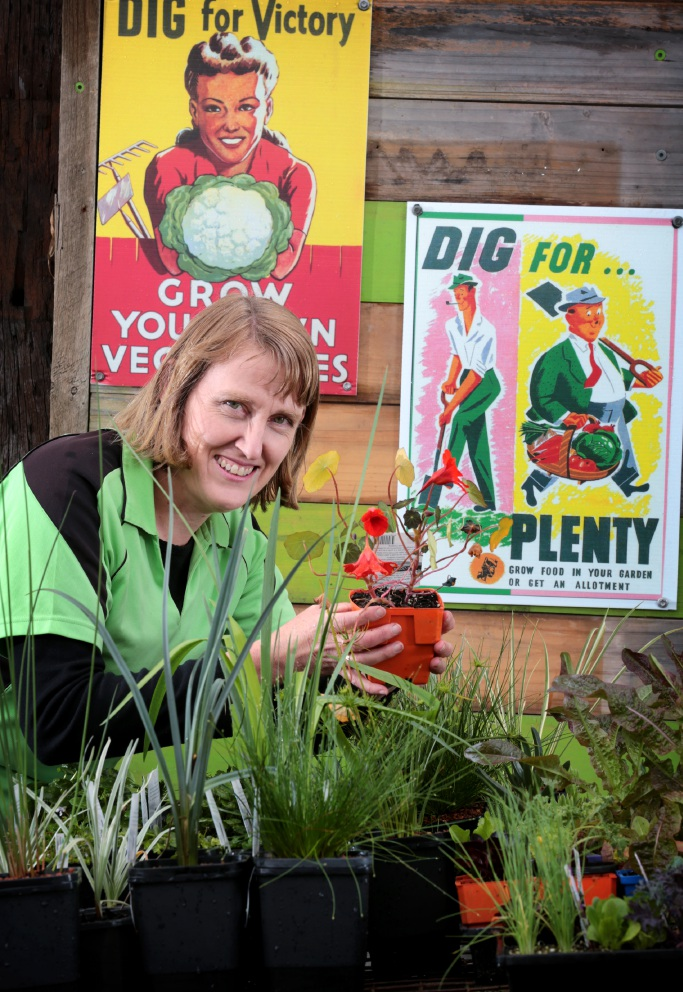 Linda Mitchener, owner of the The Green Life Soil Co, with a selection of plants ready for the Greener Garden Festival. Picture: David Baylis        d458839