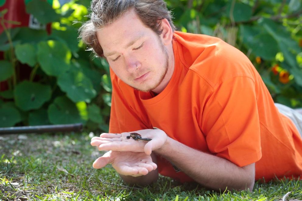 Bayswater community helps save seven wetlands baby turtles