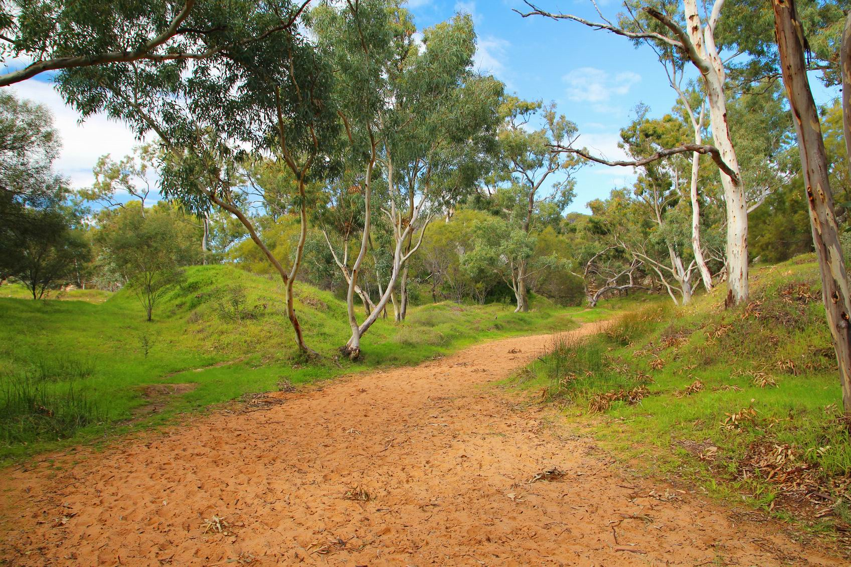 Bushcare seeks volunteers for Thornlie clean-up mission this Sunday