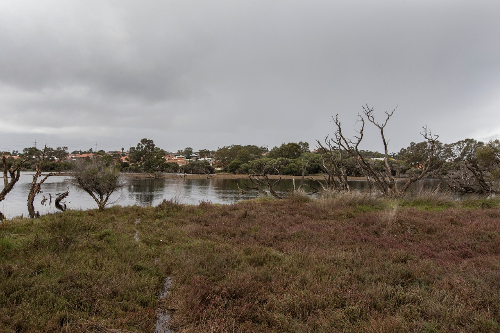 Pictured is Market Garden Swamp number one, which could be renamed Bindjar Lake. Picture: Will Russell