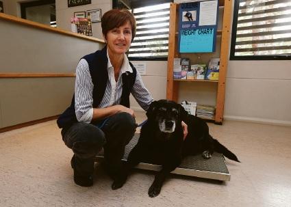 Queenie with senior veterinary nurse Julie Parsons at the Mundaring Veterinary Hospital in Glen Forrest.