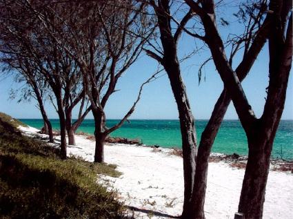 Quinns Beach in 2001.