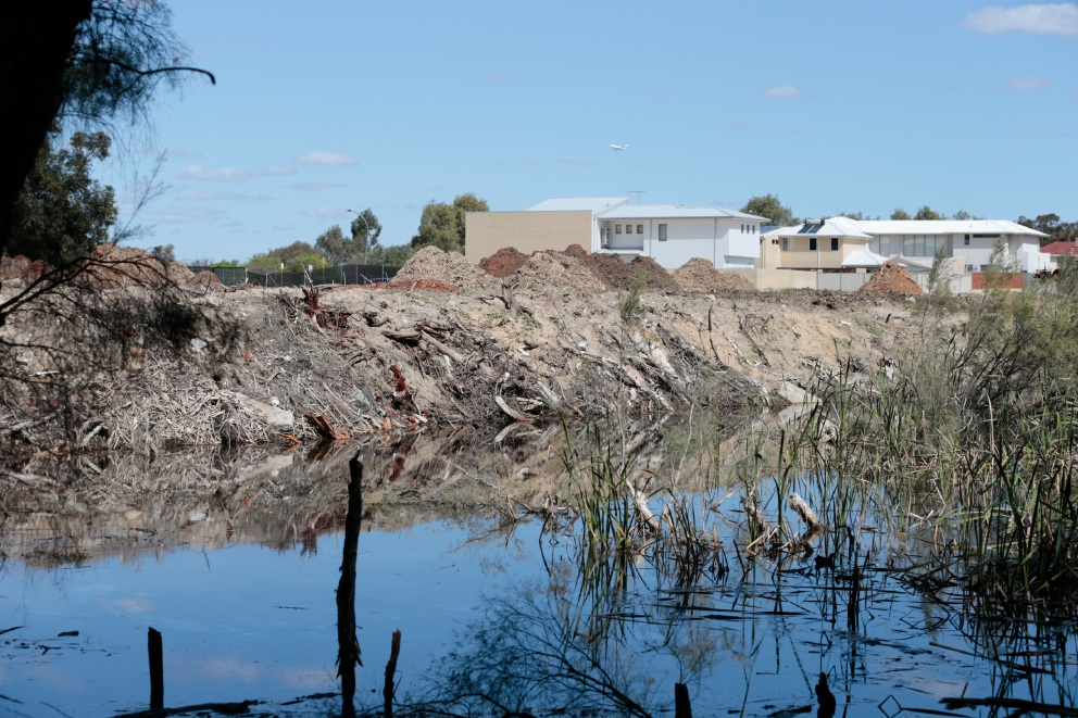 City of Bayswater has finally purchased Carter's wetlands. Picture: Andrew Ritchie.