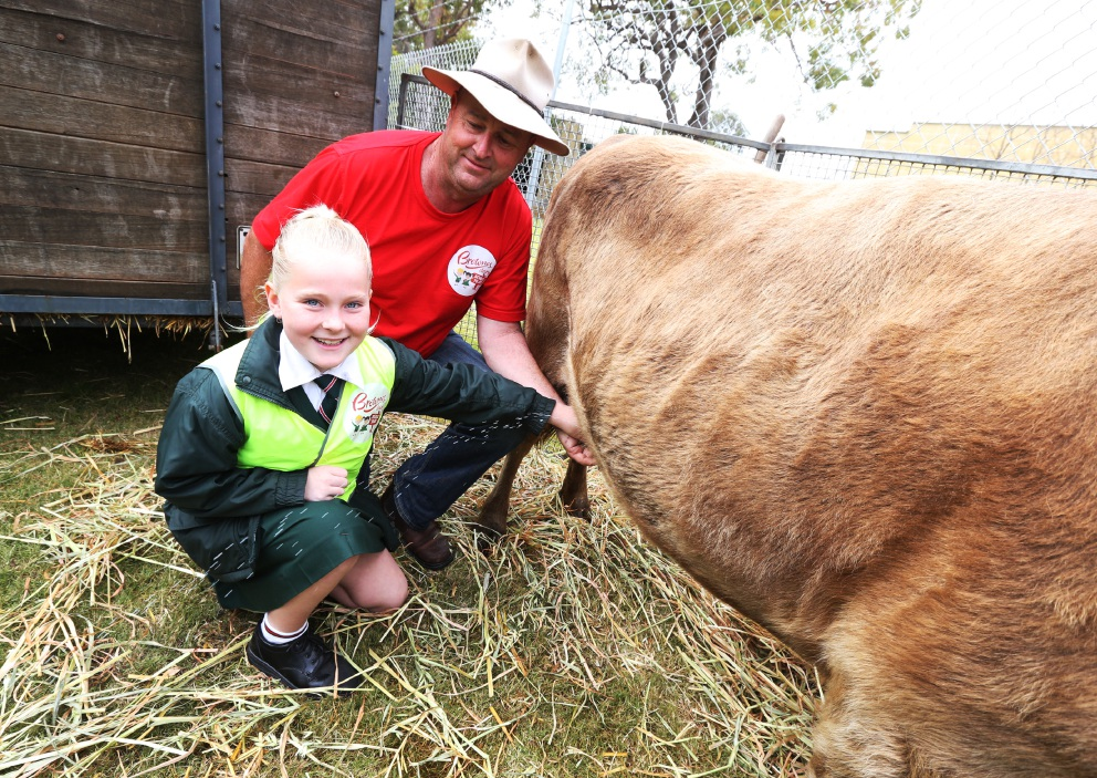 Greenwood students get tour of Brownes Dairy factory