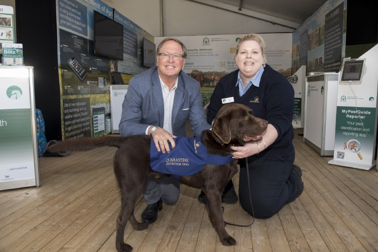 Two new quarantine detector dogs for Perth Airport