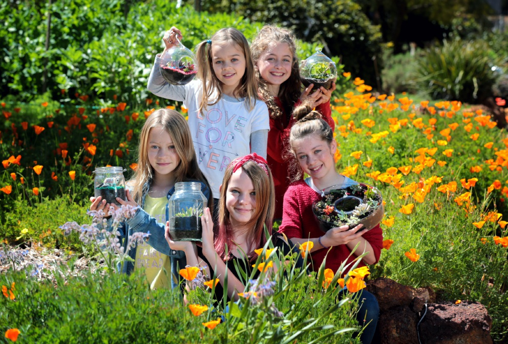 Proudly showing off their terrariums at Kalamunda Community Garden are Matilda Blades (9) and Anika Zonta Albillos (11) and, in front, Grace Blades (11), Jessica Henderson (12) and Sierra Zonta Albillos (13). Picture: David Baylis d459940