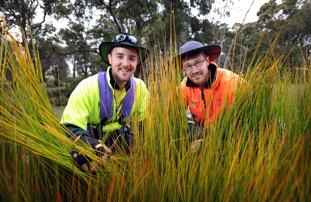 Matt Crook and Green Army team supervisor Shannon O'Grady planting native sedges in High Wycombe. Picture: David Baylis d459675