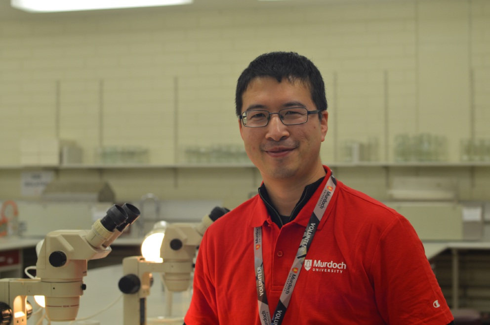 Murdoch University insect biologist and entomology lecturer Wei Xu.