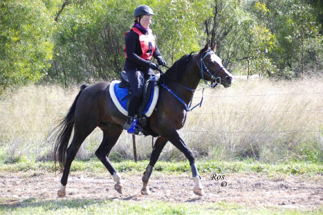 WA Endurance Riding Association: French rider takes out WA horseback challenge