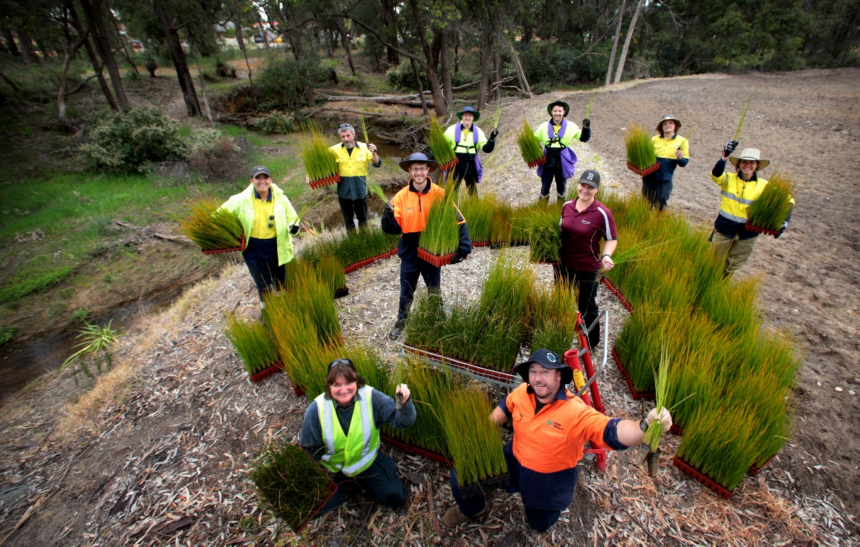 Shire of Kalamunda bush care officer Kaye Smith and Ecojobs team leader Rob Ward surrounded by helpers from the Green Army. Picture: David Baylis d459675