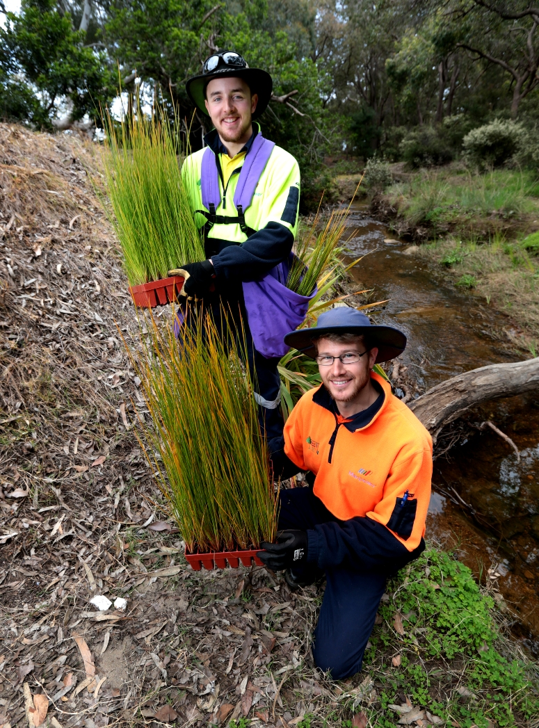 Matt Crook and Shannon O'Grady in revegetation work at Poison Gully. Picture: David Baylis d459675