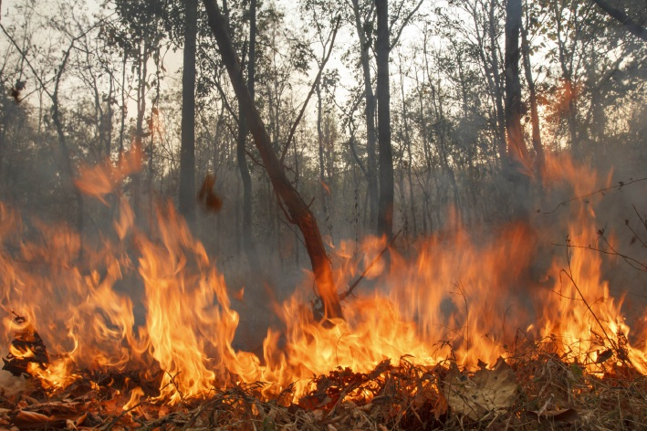 Shire of Mundaring: burning prohibited from December 1