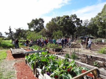 Act-Belong-Commit Permaculture Fest coming
