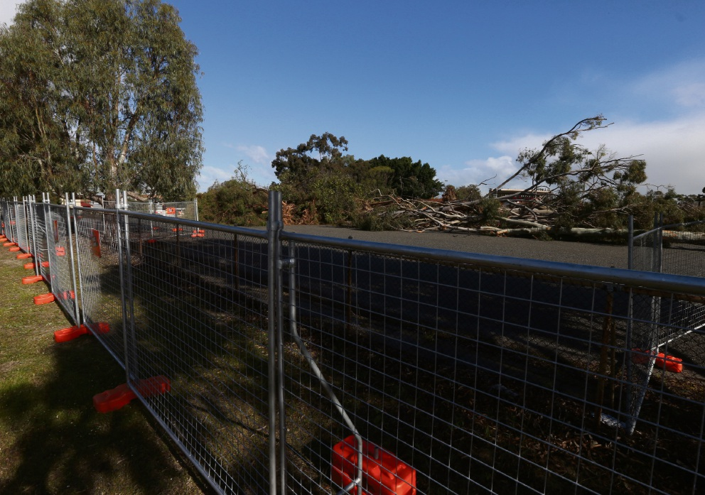 Tears shed as Lathlain Park trees make way for West Coast redevelopment