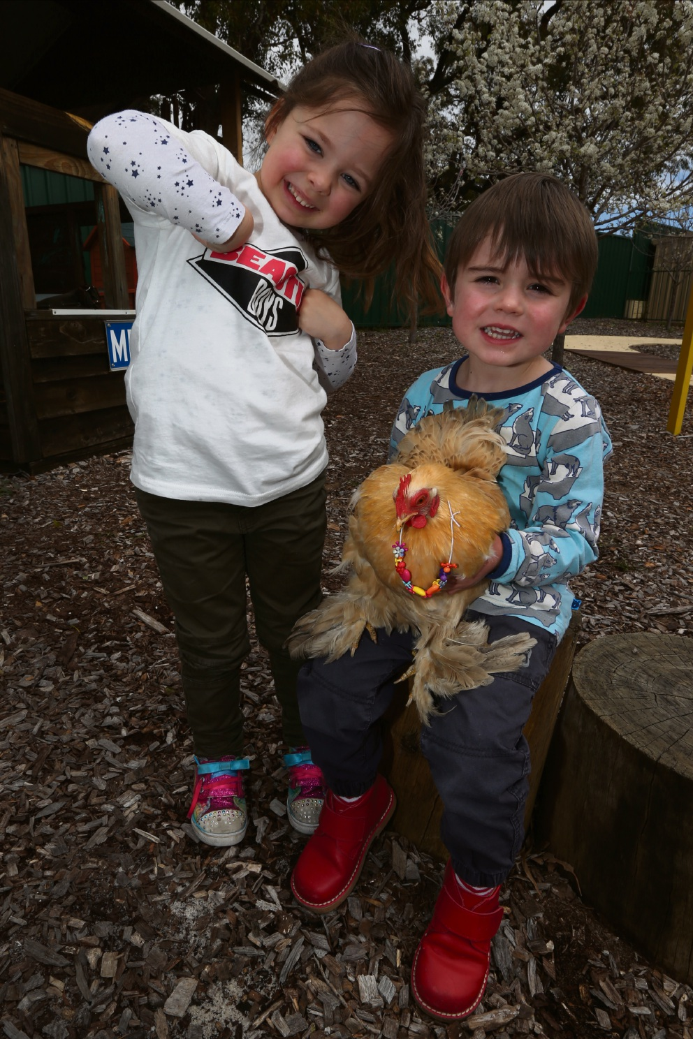 Four-year-olds Aubrey Harper-Uldum and Henry Gajic with a chicken. Picture: Matt Jelonek        www.communitypix.com.au d460068