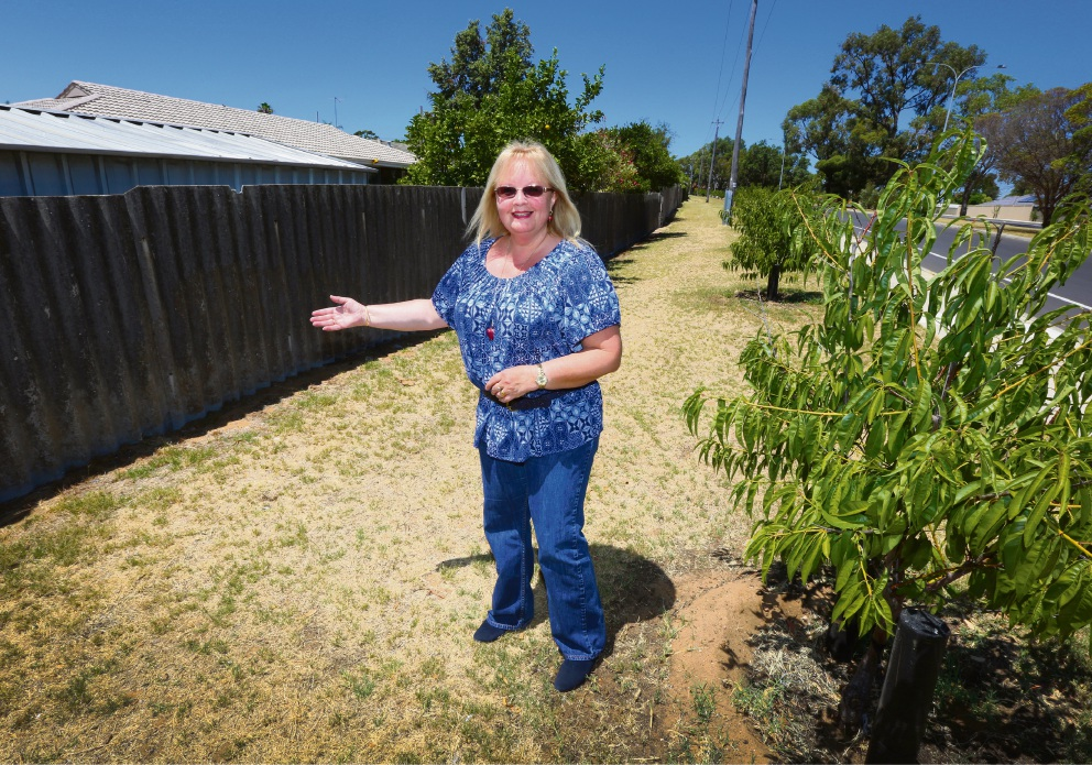 Cockburn deputy Mayor Carol Reeve-Fowkes next to the old fencing on Spearwood Avenue which should be screened by fresh vegetation.